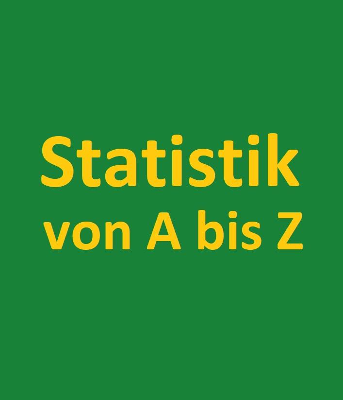 Schriftzug Statistik