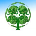 Coronakrise hat zur Steigerung der Waldbrandrisiken beigetragen