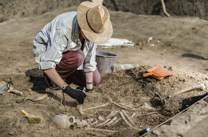 Archaeological Excavations - Ancient Human Skeleton
